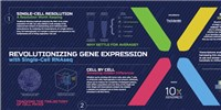 image: Revolutionizing Gene Expression with Single-Cell RNAseq
