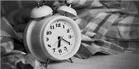 "image: Clock Gene Mutation Leads to ""Night Owl"" Behavior"