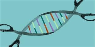CRISPR-Based Nucleic Acid Test Debuts