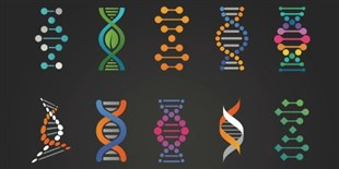 Opinion: Get to Know Why People Openly Share Genomic Data