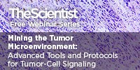 image: Mining the Tumor Microenvironment: Advanced Tools and Protocols for Tumor-Cell Signaling