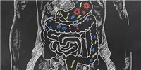 image: Companies Pursue Diagnostics that Mine the Microbiome