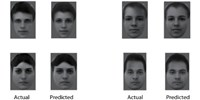 image: Primates Use Simple Code to Recognize Faces