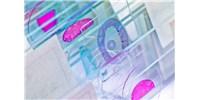 image: Cell-line Derived Controls for Diagnostic Assay Development
