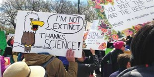 The Year in Science Policy