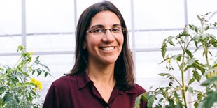 Anjali Iyer-Pascuzzi Investigates How Pathogens Invade Plant Roots