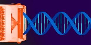 EPO Revokes Broad's CRISPR Patent