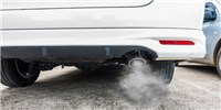 image: German Carmakers Funded Tests of Diesel Fumes on Monkeys and Humans