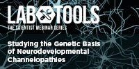 image: Studying the Genetic Basis of Neurodevelopmental Channelopathies