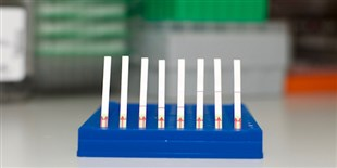 New CRISPR-Based Tools Flag Genetic Sequences and Log Data