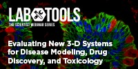 image: Evaluating New 3-D Systems for Disease Modeling, Drug Discovery, and Toxicology