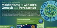 image: Beyond the Hallmarks: Mechanisms of Cancer's Genesis and Persistence