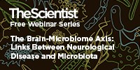 image: The Brain-Microbiome Axis: Links Between Neurological Disease and Microbiota