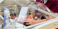 image: Preterm Labor May Be Sparked by Fetal Immune Reaction