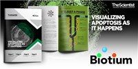 image: eBook: Visualizing Apoptosis as it Happens