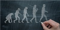 image: Arizona Moves to Alter Wording About Evolution in Education