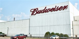 Anheuser-Busch Won't Fund Controversial NIH Alcohol Study