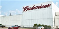image: Anheuser-Busch Won't Fund Controversial NIH Alcohol Study