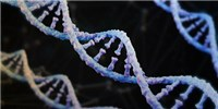 image: Novel Method Could Accelerate DNA Synthesis