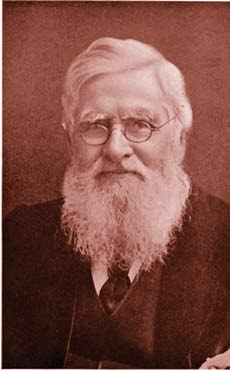 <figcaption>Alfred Russel Wallace</figcaption>