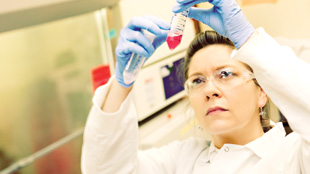 An AVI BioPharma researcher prepares AVI-6002, an RNA-based therapeutic for Ebola virus.