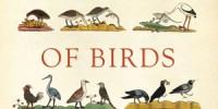 image: Book excerpt from <em>The Wisdom of Birds</em>