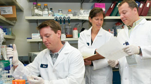 Genentech scientists are researching a combination therapy that uses two investigational compounds—a PI3K inhibitor and an MEK inhibitor—to fight cancer.