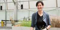 image: Dominique Bergmann: Probing Plant Pores