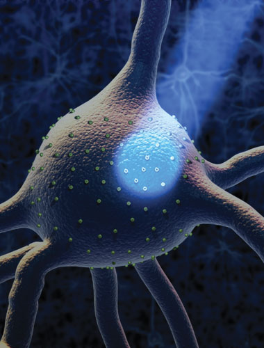 image: The Birth of Optogenetics
