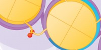 image: Epigenetic Changes in Cancer