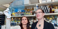Dr. Maralice Conacci-Sorrell (left), a postdoctoral fellow, and Celine Ngouenet, research technician, found a new form of the Myc-encoded protein, dubbed Myc-nick. Both work in the Hutchinson Center's Basic Science Division.Dean Forbes | Fred Hutchinson Cancer Research Center