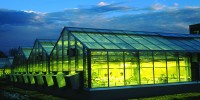 A greenhouse at the Donald Danforth Plant Science Center, this year's 8th-ranked US institution, illuminates at night.Danforth Plant Science Center