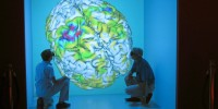 Scientists at the Groningen Neuroimaging Center examine a 3D visualization of a human brain in the