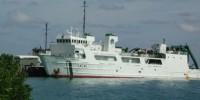 image: All aboard the Fukushima cruise