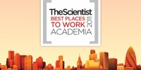 image: Best Places to Work Academia, 2011