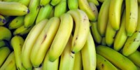 image: The Beginning of the End for Bananas?