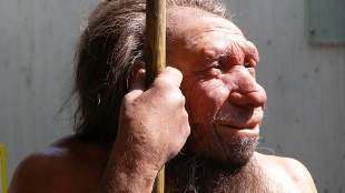 image: Neanderthal DNA in Modern Humans