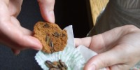 …and chocolate-chirp cookies with baked crickets.