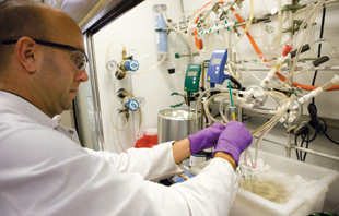 A chemist at PTC Therapeutics constructs a compound screening library. PTC develops small-molecule drugs for rare genetic diseases like cystic fibrosis.