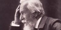 image: Haeckel's Radiolarians