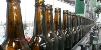 image: Beer Yeast Identified