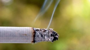 image: Nicotine Protects Against Parkinson's?