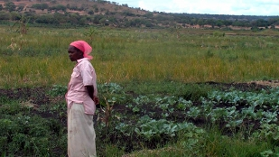 A woman with her crops grown in a wetland in South Africa