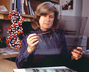 Bucking conventional wisdom, Mary-Claire King spent nearly two decades proving that complex diseases like breast cancer could have a genetic cause. Today, the same work could be completed in months.