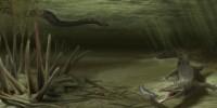 image: Ancient Croc Found