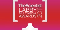image: The 2011 Labby Multimedia Awards
