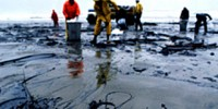 image: Oil Spills: Research and Protests