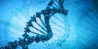 image: Watson Opposes Gene Patents