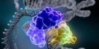 image: Top 7 in Genomics & Genetics