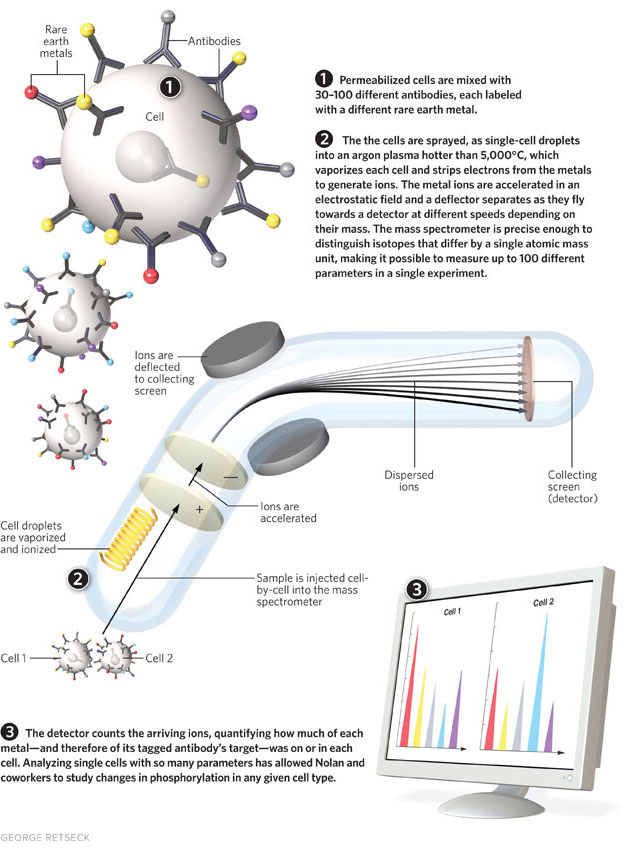 flow cytometry for the masses the scientist magazine